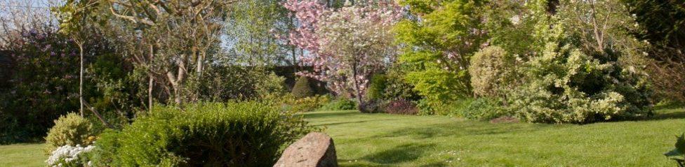 Le jardin d'Auguste